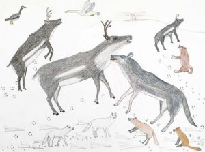 CARIBOU AND WOLVES
