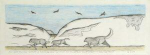 THREE WOLVES AT QULIRSINNUAQ AND RAVENS