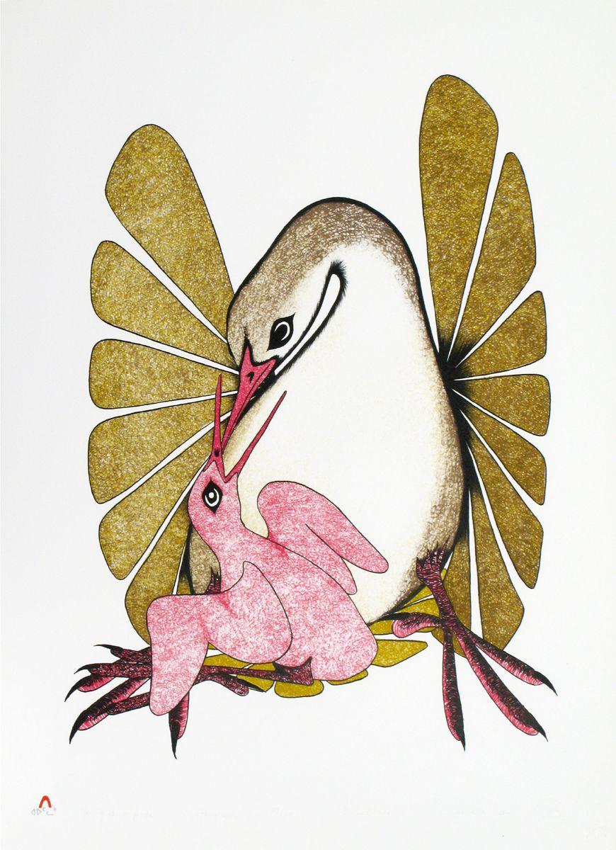YOUNG BIRD FEEDS