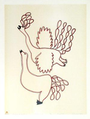 SPRING BIRDS MOULTING