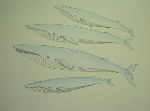FOUR WHALES
