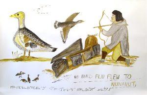NO BIRD FLU FLEW TO NUNAVUT